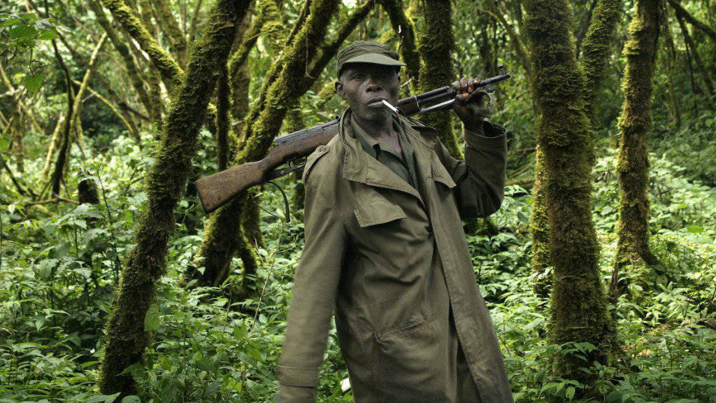 Ein Ranger im bekannten Virunga-Nationalpark im Ost-Kongo. (Archivbild)