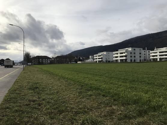Zwischen Hauptstrasse und den neuen Blöcken gibt es weitere unbebaute Flächen, die in die neue Zone umgezont werden sollen.