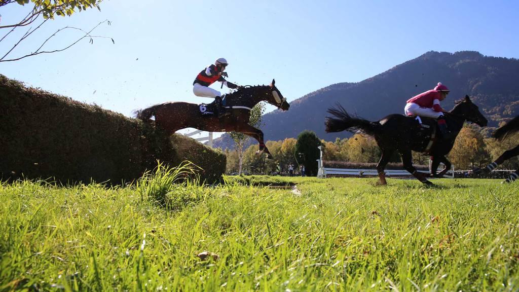 Pferderennen in Maienfeld/Bad Ragaz