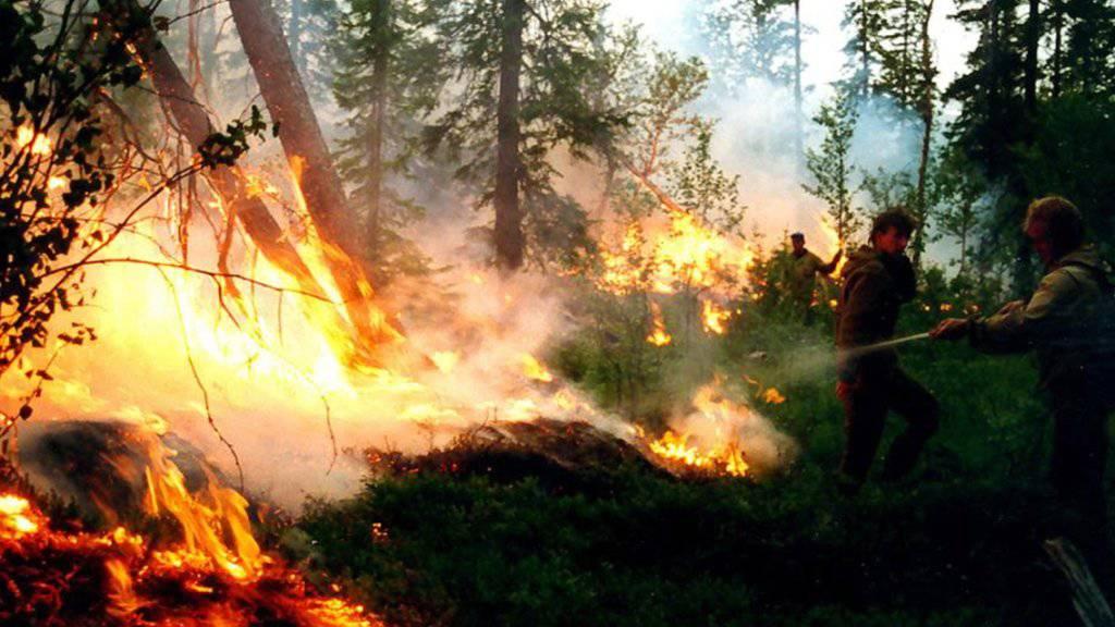 Tosende Flammenhölle in der russischen Taiga: Jetzt sollen noch mehr Flugzeuge bei der Brandbekämpfung helfen. p