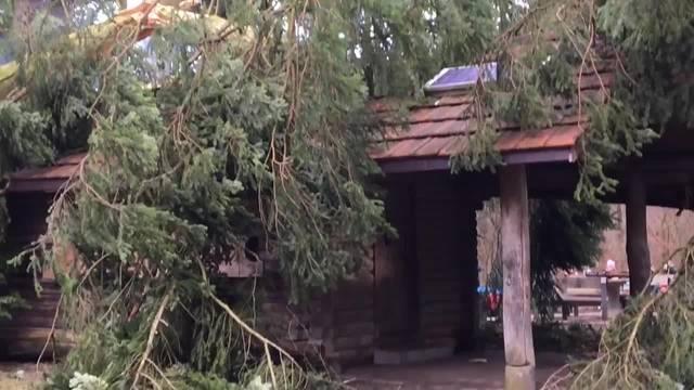 Eins zu Null für die Waldhütte Länzert in Niederlenz.