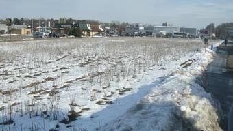 Das Zuchwiler Ausserfeld im Schnee: Hier soll der Fachmarkt gebaut werden.