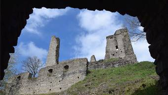 Die Burgruine Schenkenberg in Thalheim ist ein beliebtes Ausflugsziel und steht unter Schutz. mhu