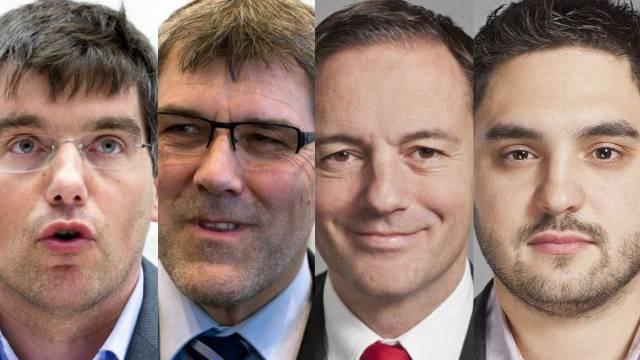 EU-Turbos der SP: Roger Nordman (VD), Eric Nussbaumer (BL), Marin Näf (ZH) und Cédric Wermuth (AG).