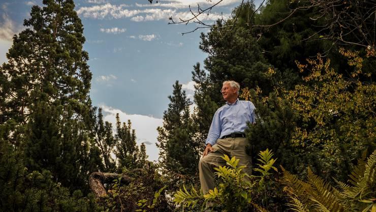 Die Harmonie von Pflanzen, Wasser und Steinen fasziniert Christian Körner – ob in der freien Natur, im eigenen Garten oder – wie im Bild – im Botanischen Garten der Universität Basel.