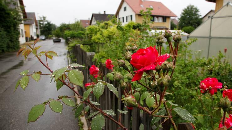 Die Böden im Elsässli-Quartier sind stark belastet. (Archiv)