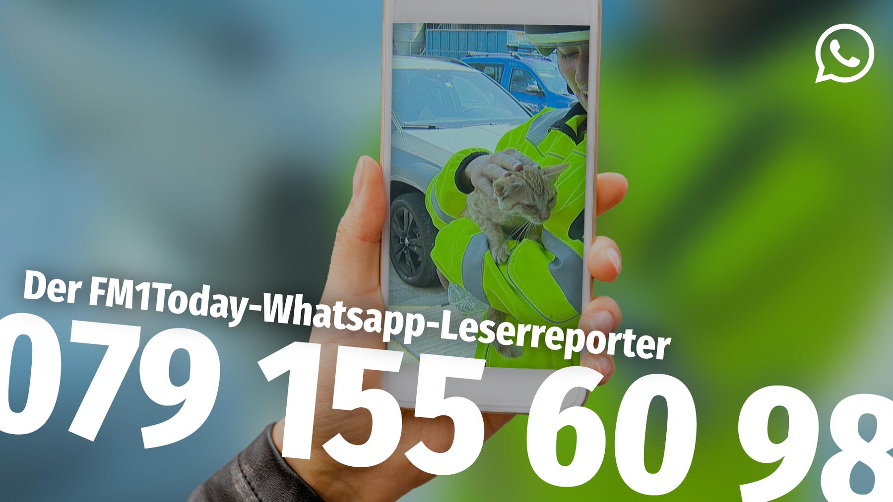 whatsappleserreporter2