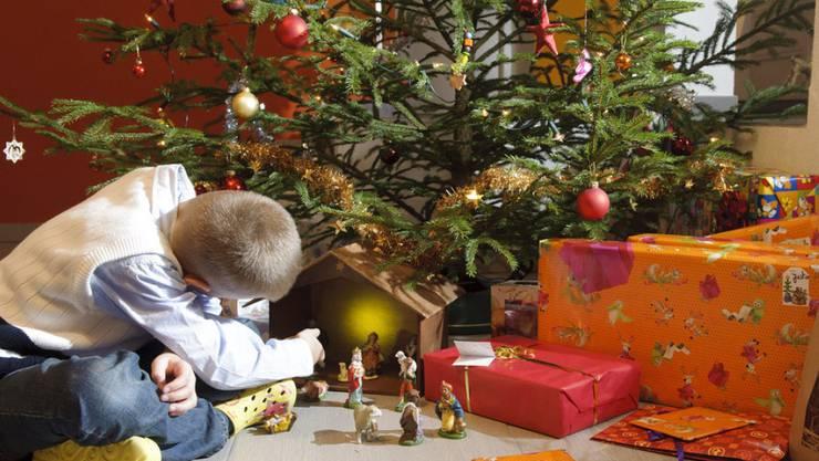 Weihnachtsbaum im topf bern