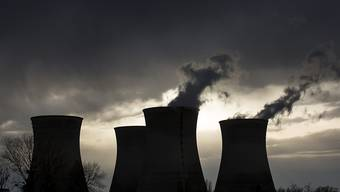 Frankreich will den Anteil von Atomstrom reduzieren - im Bild das Atomkraftwerk Bugey in der Nähe von Lyon. (Archiv)