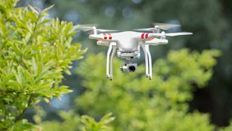 Drohnen werden immer beliebter. Für Vögel wird das zunehmend zum Problem.