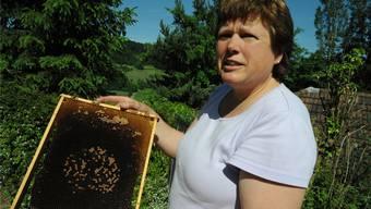 Die Wintersinger Imkerin Claudia Huber mit den traurigen Resten eines Bienenvolkes: Die Larven sind kurz vor dem Schlüpfen erfroren.