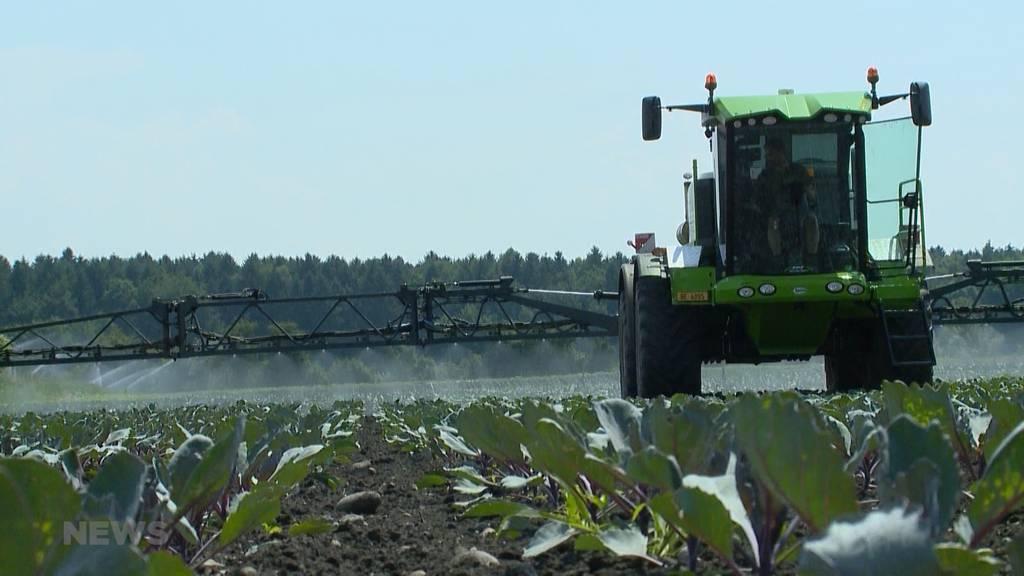 Schweizer Bauern ärgern sich über Pestizide im Import-Gemüse