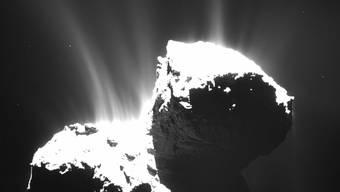 Könnten Kometen wie Tschuri zur Entstehung von Leben auf der Erde beigetragen habe? Ein Forscherteam hat nun Moleküle in Tschuris Dunstwolke nachgewiesen, die für lebende Organismen eine Schlüsselrolle spielen. (Archivbild)