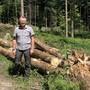 Förster Marcel Hablützel mit den gefällten Bäumen.