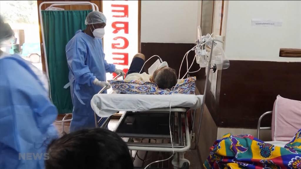Coronavirus trifft Indien schwer: Schweiz schickt erste Ladung Hilfsgüter