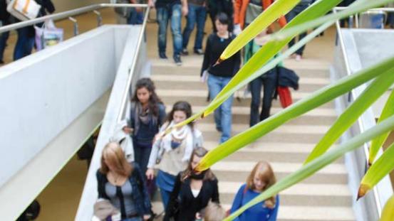 Schüler an der Neuen Kanti Aarau.
