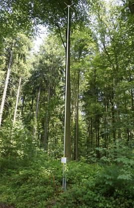 12,5 Meter hoch wird hier der Hügel aus abgelagertem Material – innerhalb der nächsten 50 Jahre. Der Hügel wächst auf 22,5 Meter am höchsten Punkt an.