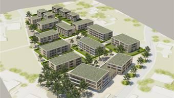 Die von der Oase-Gruppe angrenzend an den heutigen Obergösger Dorfkern geplante Überbauung Steinengasse mit 17 Baukörpern; rechts die als Alters- und Pflegeheim vorgesehenen Gebäude an der Lostorferstrasse. Visualisierung