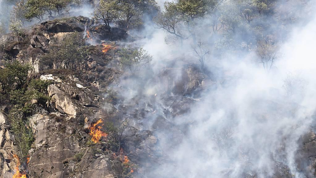 Aufgrund des starken Windes im Süden breitet sich das Feuer bei Torricella schnell aus. Im Bild: Waldbrand bei Biasca im Jahr 2018 (Archivaufnahme).