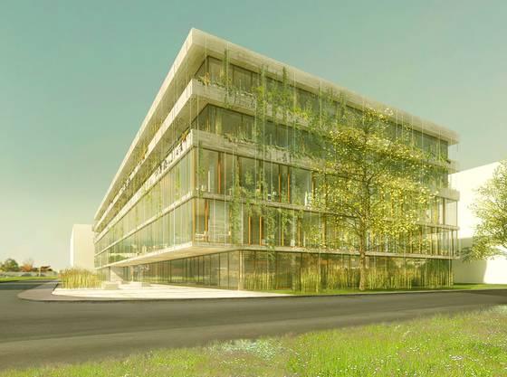 An der anderen Ecke des «BaseLink»-Areals wächst derzeit der Neubau für das Schweizerische Tropen- und Public Health-Institut in die Höhe.