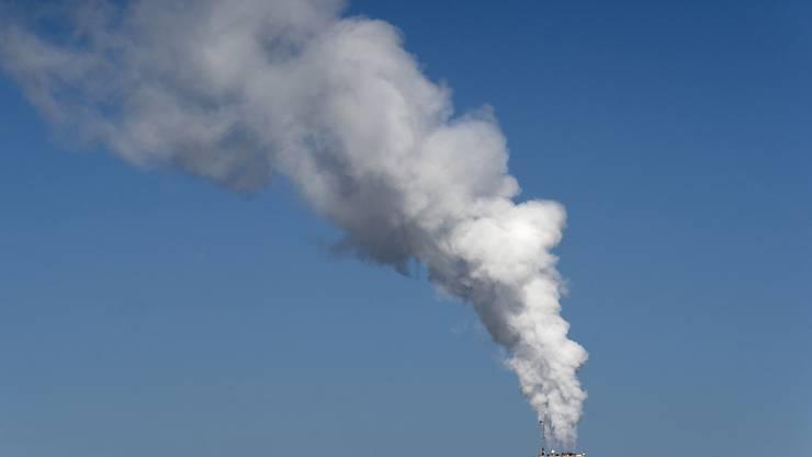 Unternehmen, die Mitglied der Energie-Agentur der Wirtschaft sind, haben ihren CO2-Ausstoss kontinuierlich gesenkt. (Symbolbild)