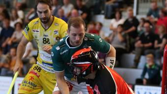 Dave Wittwer und Goalie Christoph Reich konnten die Tigers (Flühmann) einmal zu wenig im Schach halten.