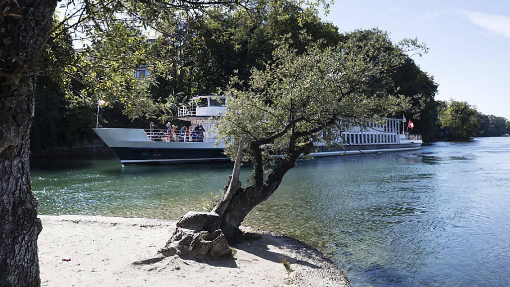 Bis hierher dürfen längere Schiffe fahren: Passagierschiff von der Rheininsel bei Rheinfelden aus gesehen. (Archivbild)
