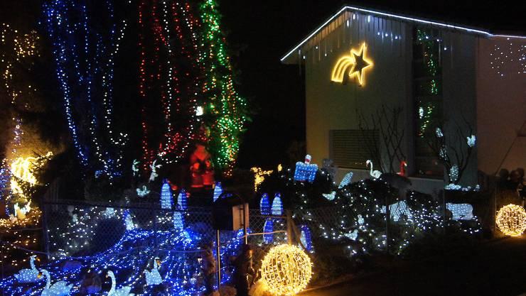 20 000 Lämpchen und 60 Figuren leuchten jedes Jahr im Garten von Thomas Fürbringer in Uitikon.