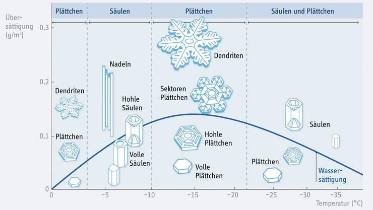Vielfältige Schneekristalle in Abhängigkeit von Temperatur und Luftfeuchtigkeit.