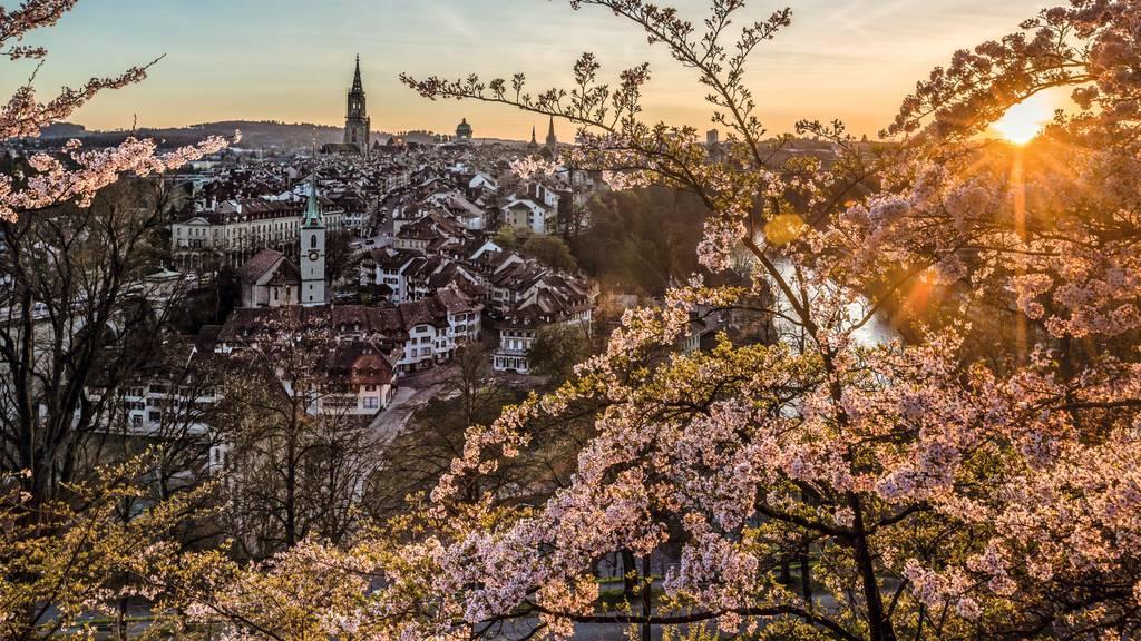 Ein Viertel weniger Firmensteuern: Bern kündigt Sparprogramm an