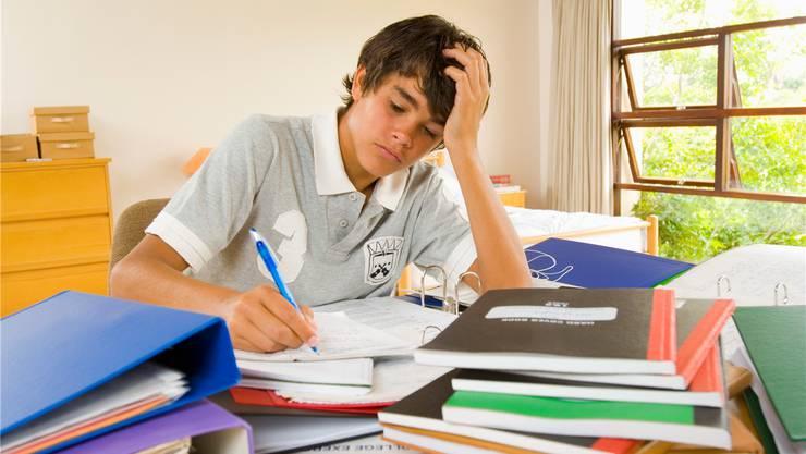 Hausaufgaben sind unbeliebt.