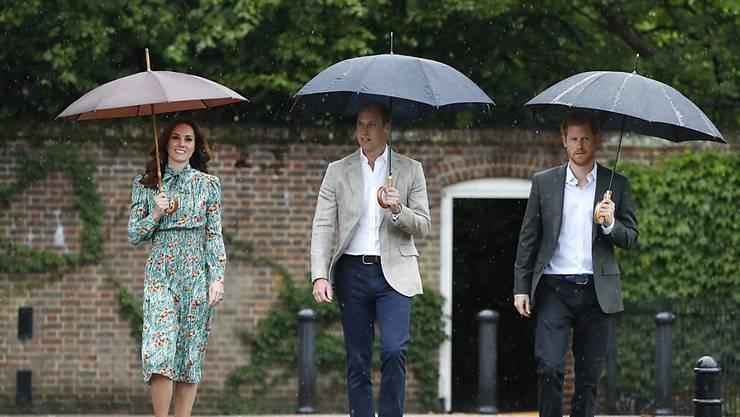 Dianas Söhne, Prinz William (Mitte) und Prinz Harry (rechts), ehrten ihre Mutter bereits am Mittwoch. Sie besuchten unter anderem einen Garten, der an Prinzessin Diana erinnert.