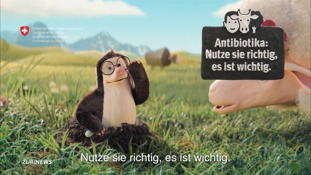Bund warnt vor Antibiotika