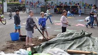Wohlen Primarschule Halde Projekttage