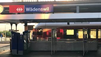 Am Montagabend kam es am Bahnhof Wädenswil zu einer Schlägerei zwischen mindestens vier Männern.
