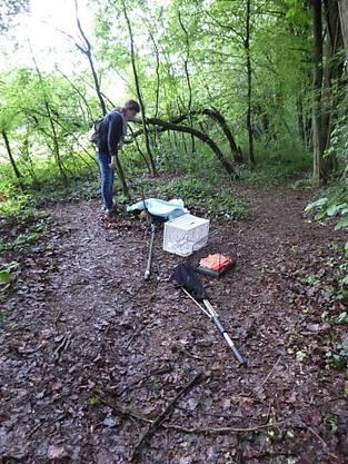 Waldstück im Parc des Evaux Onex: Hier wurde der Kater gefunden.