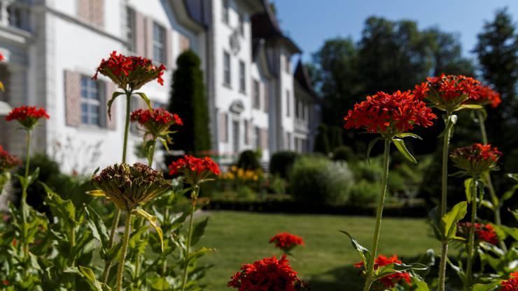 Idylle im Garten des Schloss Waldegg