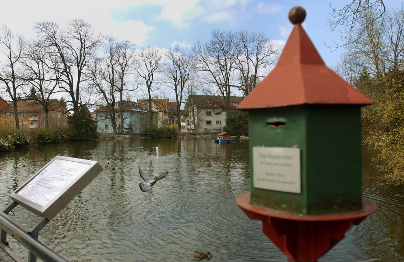 Der Nestweiher im St.Galler Quartier Riethüsli (Archivbild: Chris Mansfield)