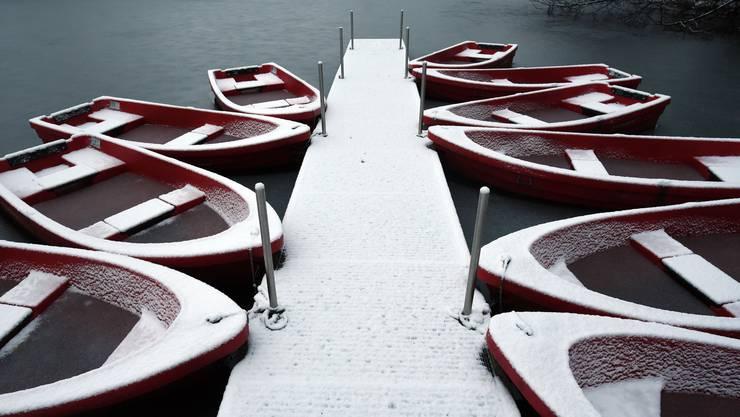 In Deutschland ist der erste Schnee des Winters bereits gefallen. So auch hier in Köln, wo die weisse Pracht einige Ruderboote gezuckert hat.