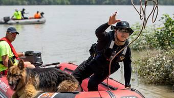 Ungarische und südkoreanische Suchmannschaften auf der Donau haben noch nicht aufgegeben