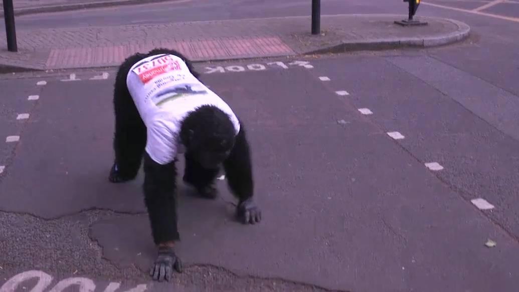 Warum tut er sich das an? «Mr Gorilla» kriecht noch immer über Londoner Marathon-Strecke