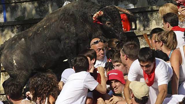 Wild gewordener Stier stürmt Zuschauertribüne