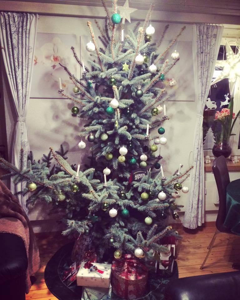 Der Christbaum von Cynthia