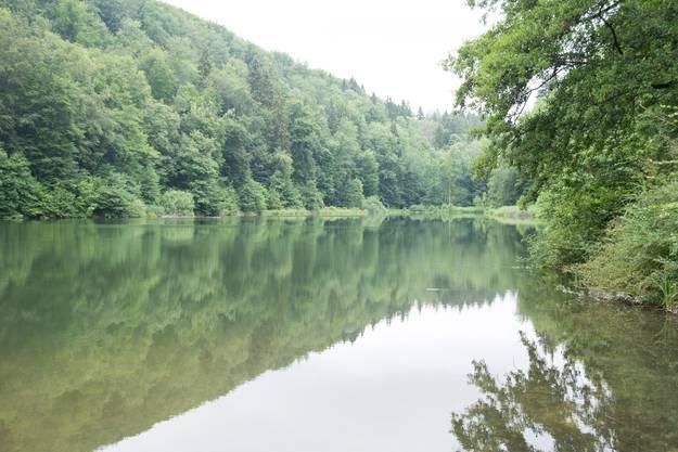 Der Egelsee ist der grösste Natursee im Kanton Aargau.