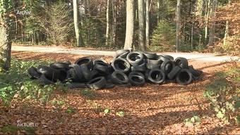 Die Pneus stehen aufgereiht am Wegrand im Wald in Schafisheim. Bereits drei Jahre zuvor wurden in Schafisheim Reifen illegal im Wald entsorgt.