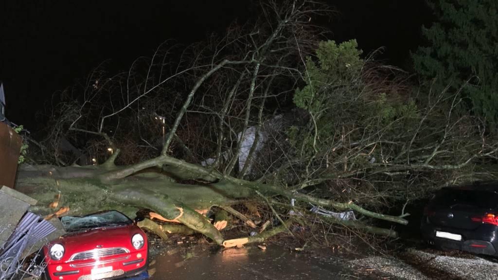 Sturm Petra hielt Rettungskräfte die ganze Nacht wach
