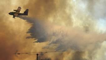 Löschflugzeug nahe der Ortschaft Pedrógão Grande im Einsatz gegen den Waldbrand.