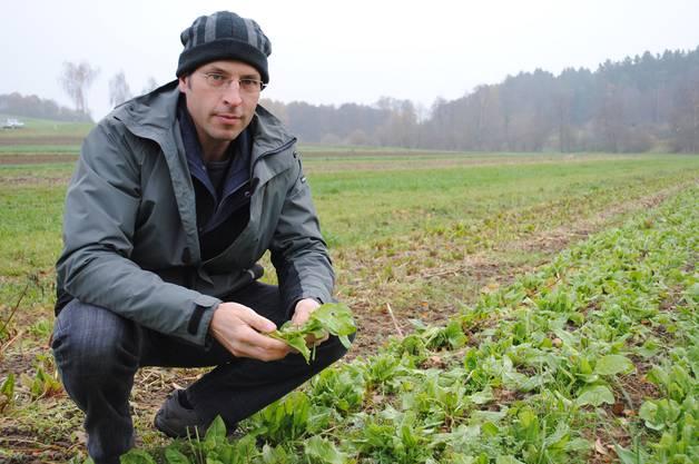 Damit Bauern wie Klaus Böhler überleben können, setzen sie auf Nischenprodukte.Silvia Schaub