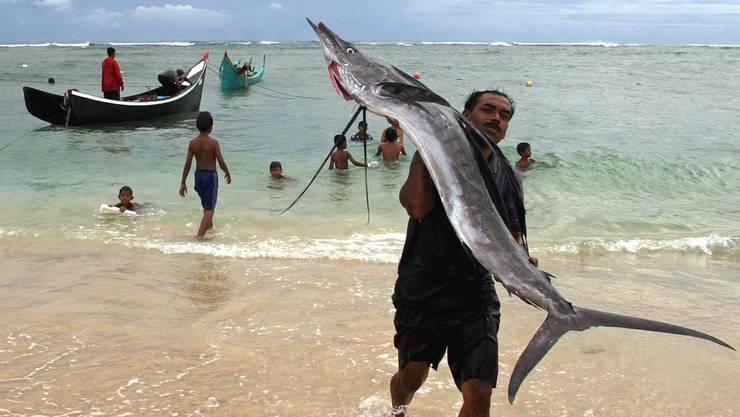 Ein Fischer mit einem Schwertfisch in Lhok Nga/Indonesien.
