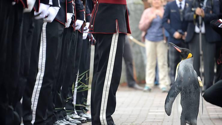 Sir Nils Olavs Auftritt gehört zu einer Zeremonie mit langer Tradition.